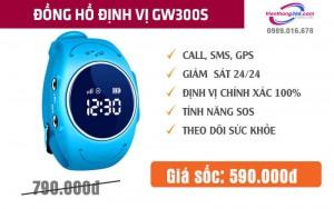 WONLEX GW300S